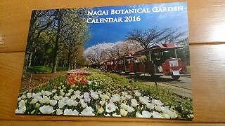 blogIMG_0223.jpg